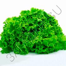 Загадки про салат