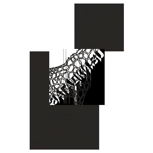 Раскраски жирафа