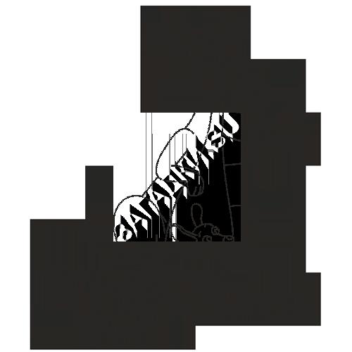 Раскраски про кенгуру