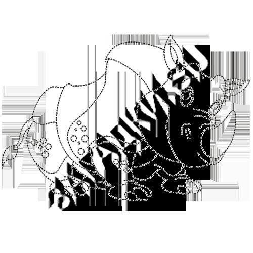 Раскраски-носорога