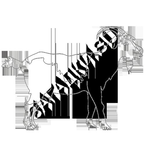 Раскраска козы