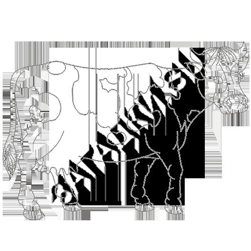 Раскраски коровы
