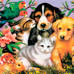 Стихи про домашних животных